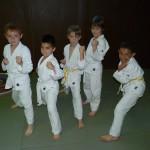 compétition_karate_lyon_enfant