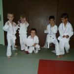 competiton_karate_rhone_alpes_region_lyon_mions