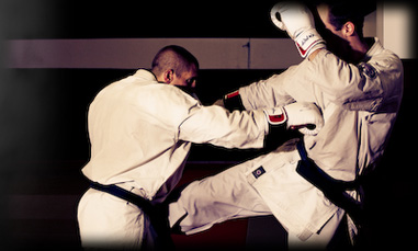 karate-pro-fight-contact-mma